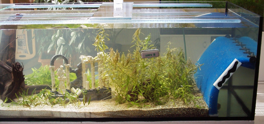 1200 liter aquarium for Boden aquarium